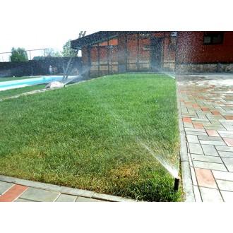 Роль полива при укладке газона
